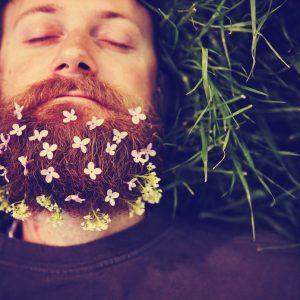 Basic Beard Oil